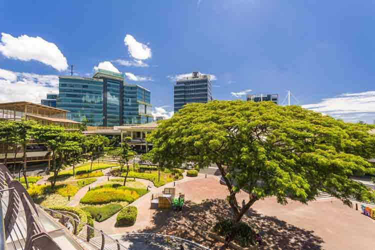 Cebu Attractions | Ayala City