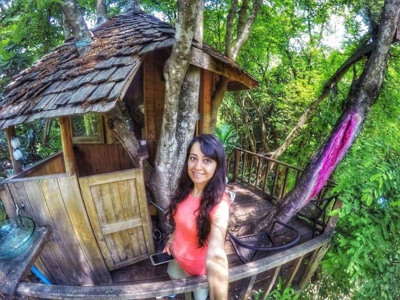 tree house stay what to do in chiang mai