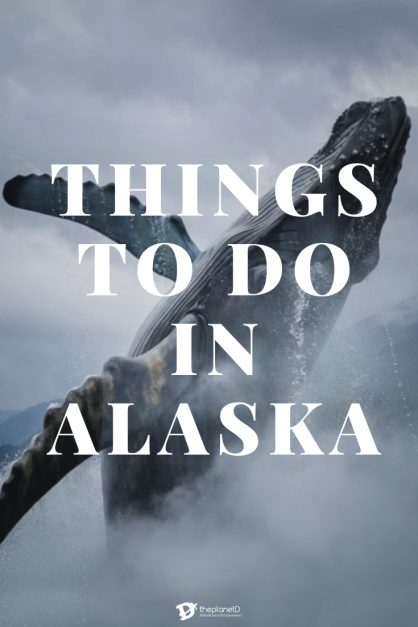 things to do in in Alaska after a cruise