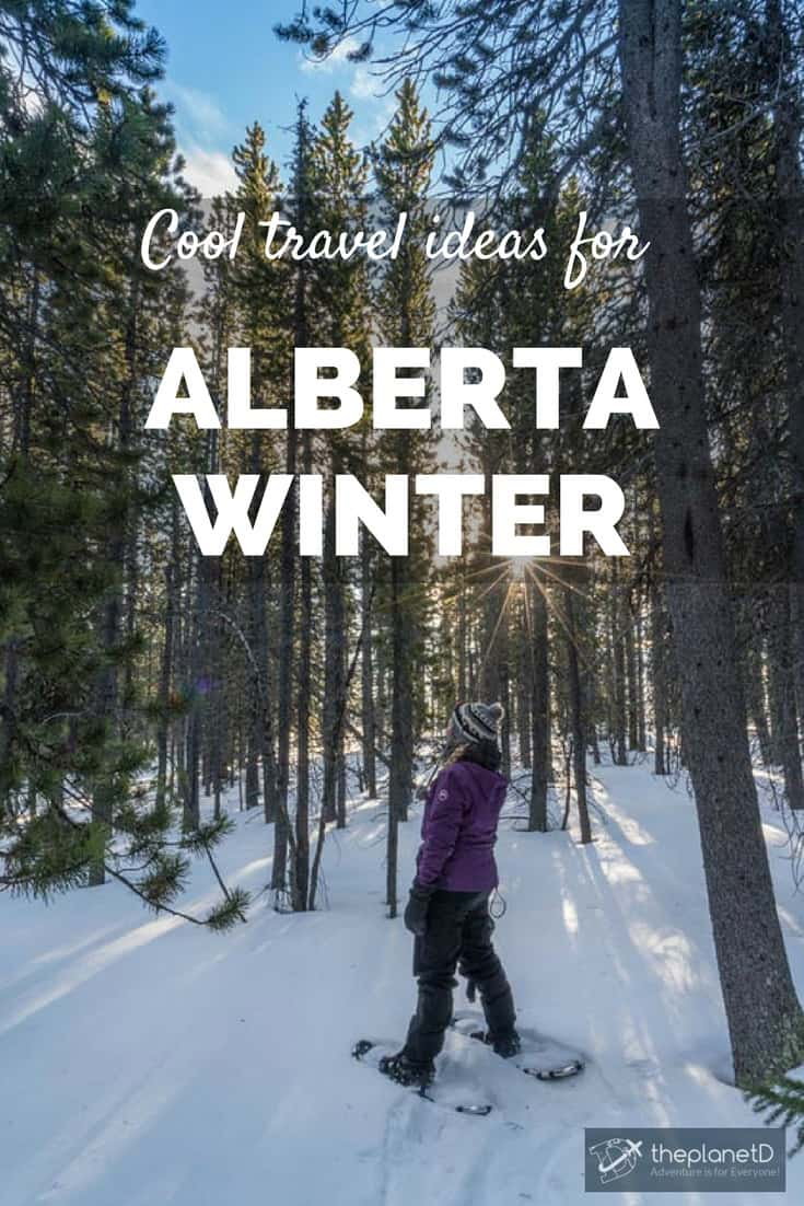 cool things to do in Alberta this winter