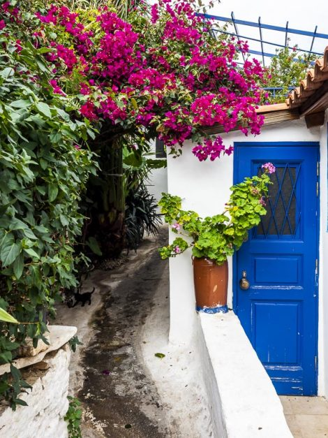 Colorful doors and windows in the Plaka neighborhood of Athens