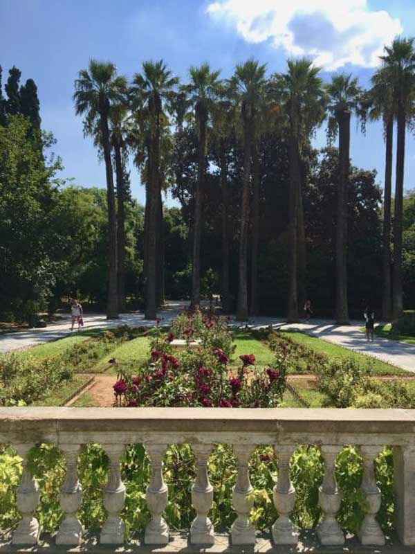 what to see in athens greece   National Garden