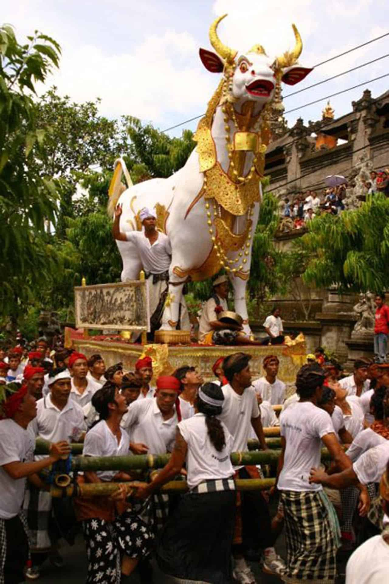 bali cremations ceremony