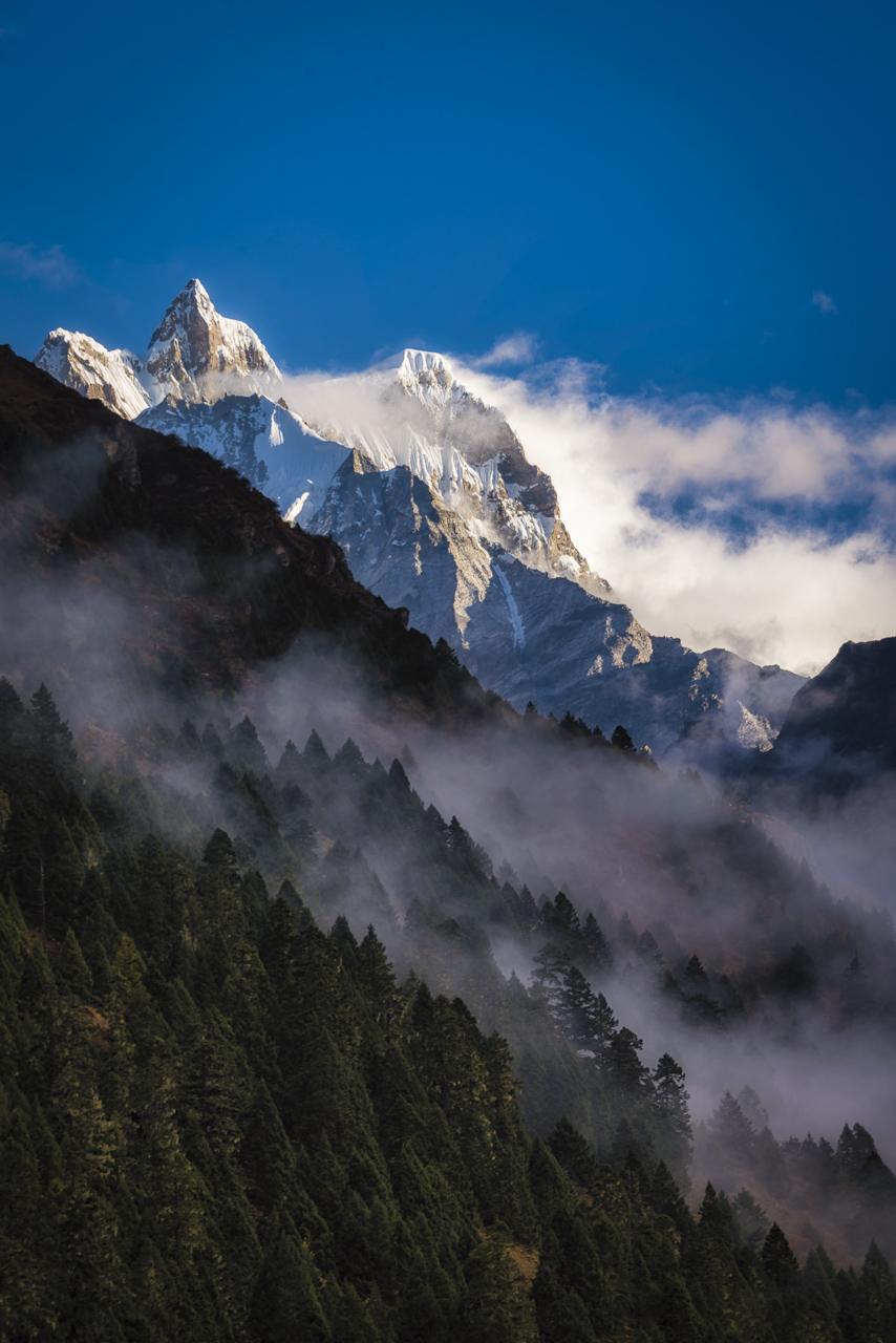 things to do in Bhutan Trekking