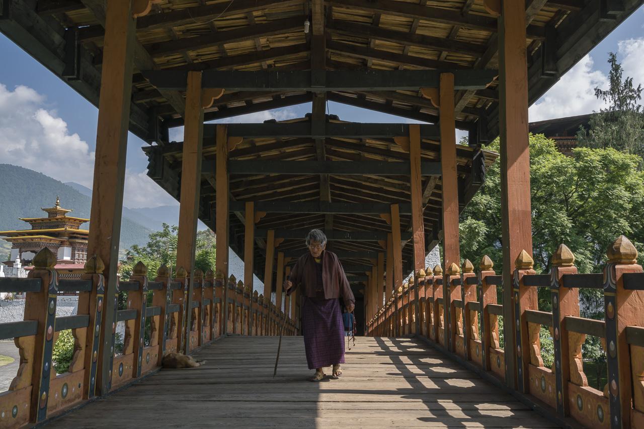 things to do in bhutan Phunaka Dzong bridge