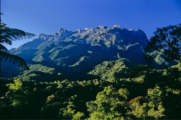 borneo mountain