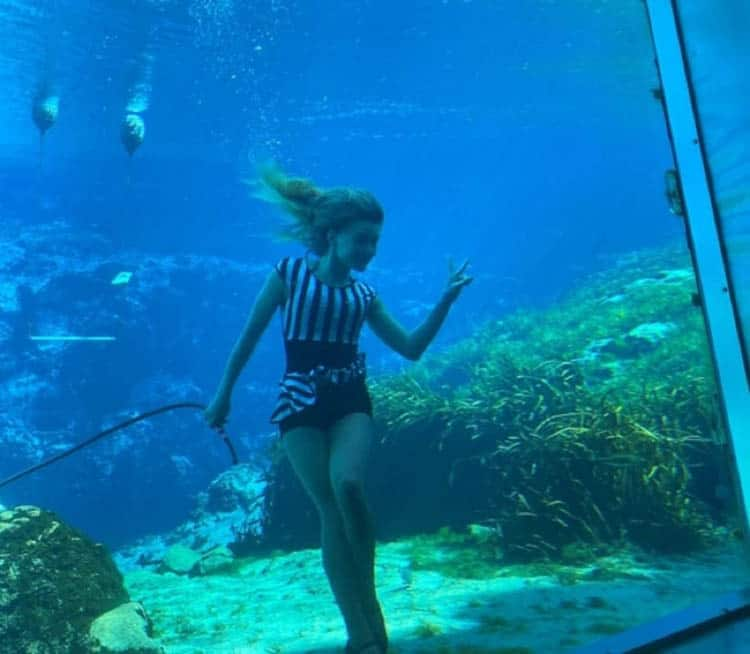 things to do in central florida today | mermaids of Weeki Wachee