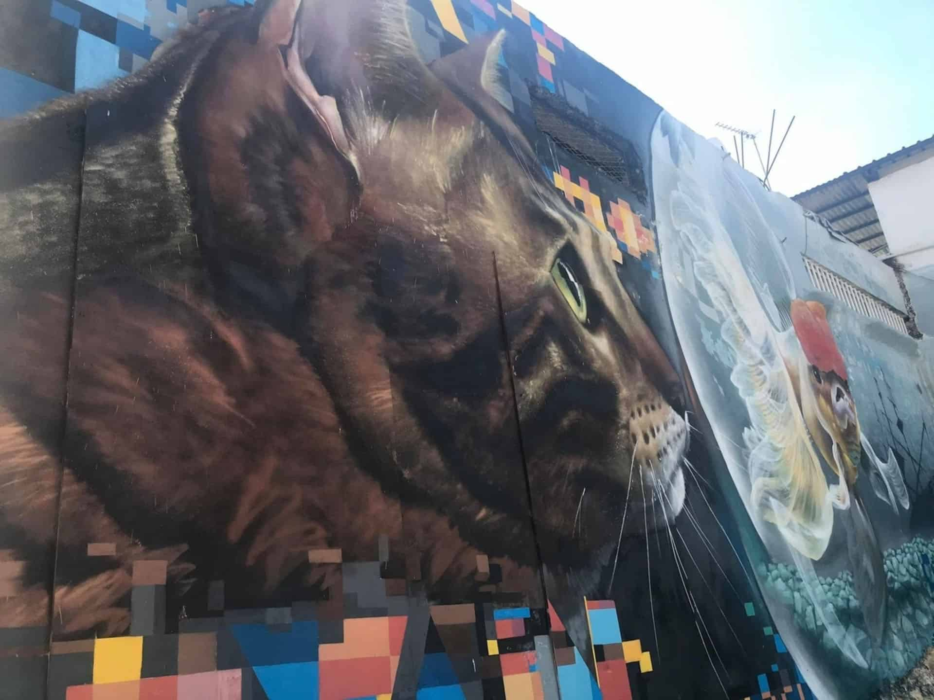 paphos street art cyprus