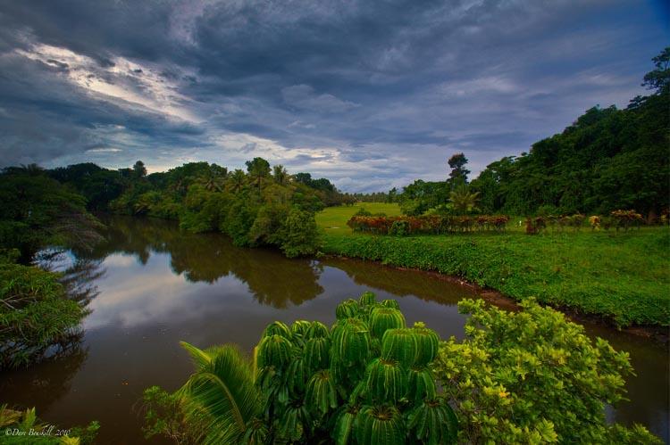 на что посмотреть в фиджи |  пышный пейзаж Фиджи Чем заняться на Фиджи? things to do in fiji lush forests