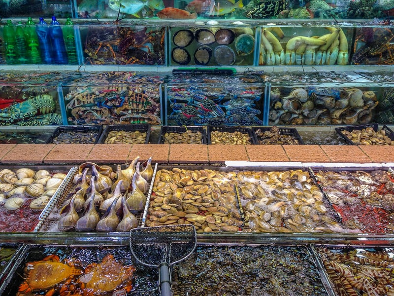 must do in hong kong | fish markets
