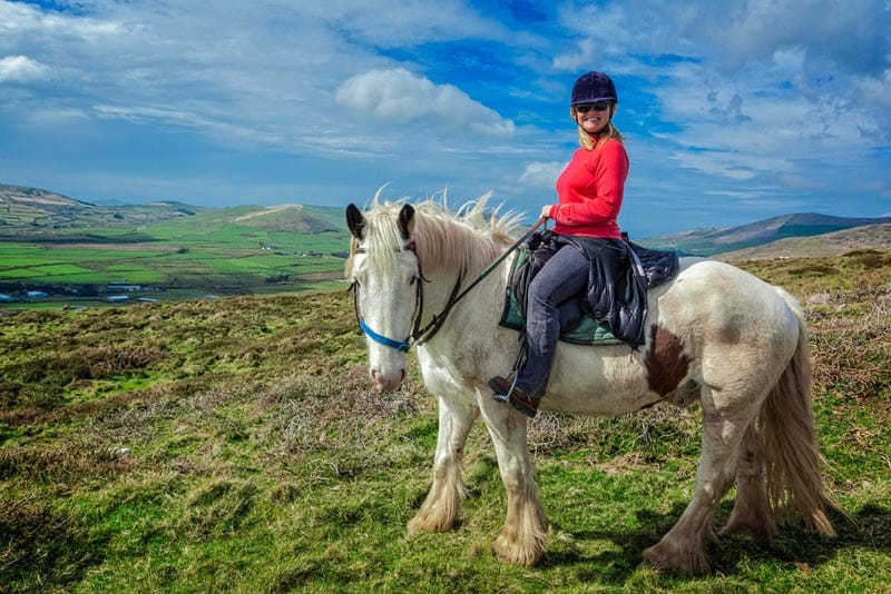 things to do in Ireland horses