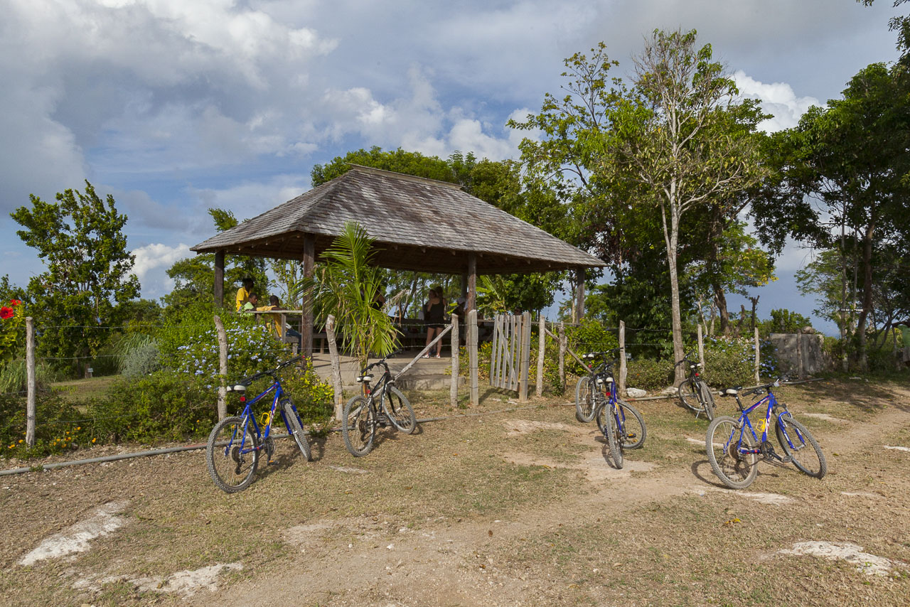 Things to do in Montego Bay: Braco Hike and Bike