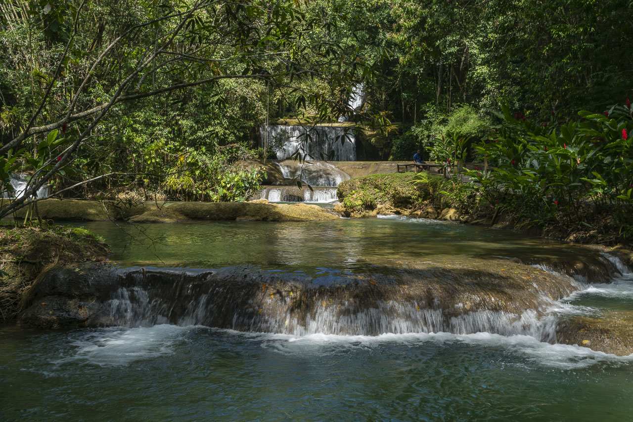 what to do in montego bay waterfalls