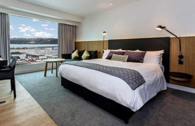 where to stay in new zealand aukland