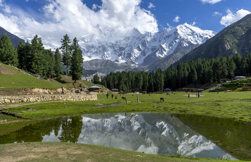 things to do in pakistan fairy meadows campsite