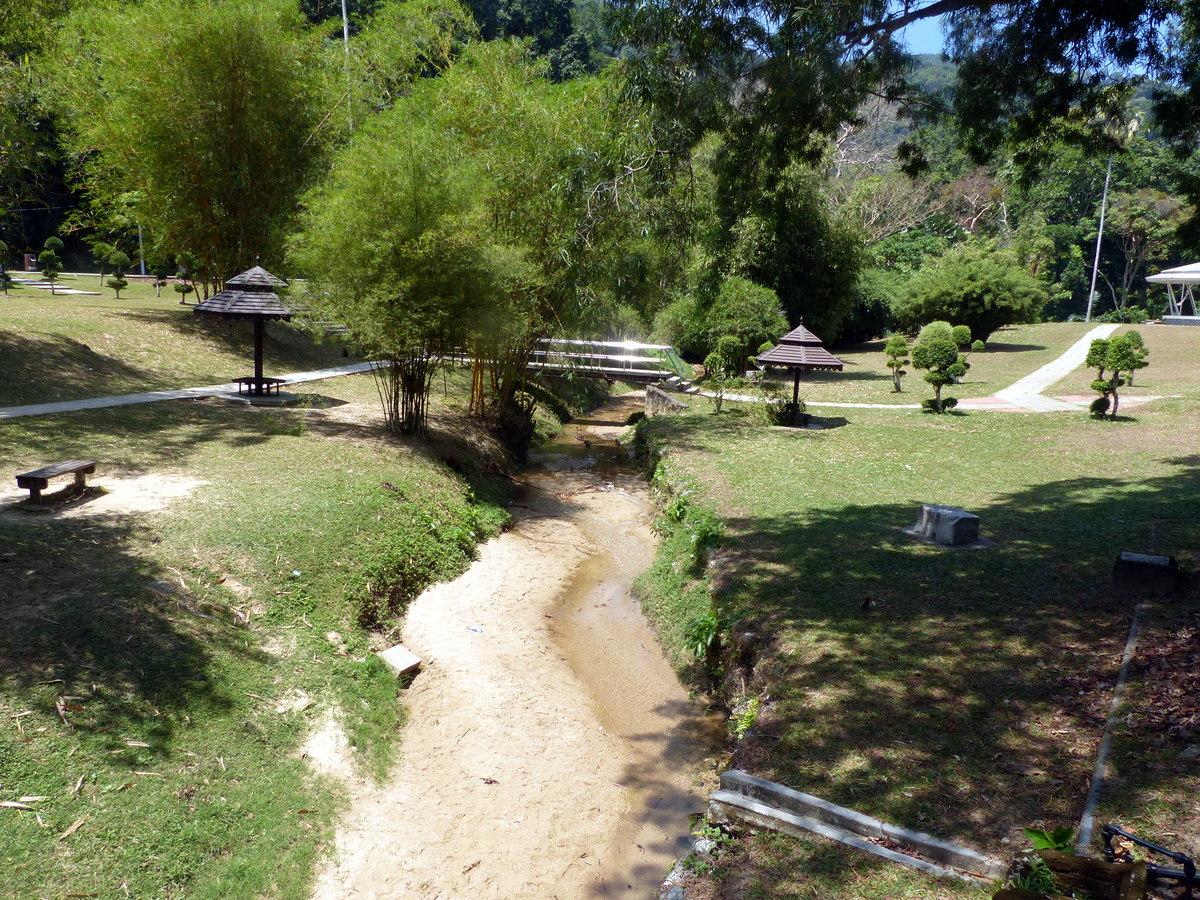 penang attractions   botanical gardens