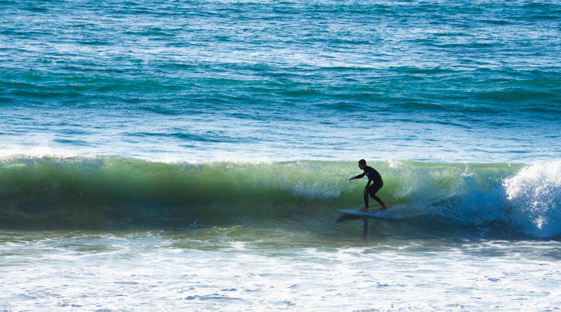 surfing is one of the great hings to do in san diego