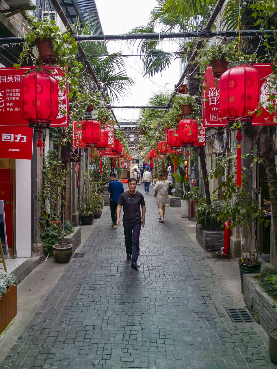 places in shanghai to visit | French concession