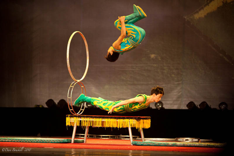 where to go in shanghai circus world