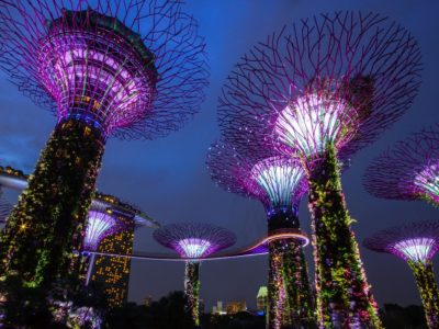 34 of the Best Things to do in Singapore
