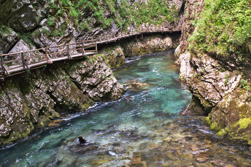 things to do in slovenia gorge