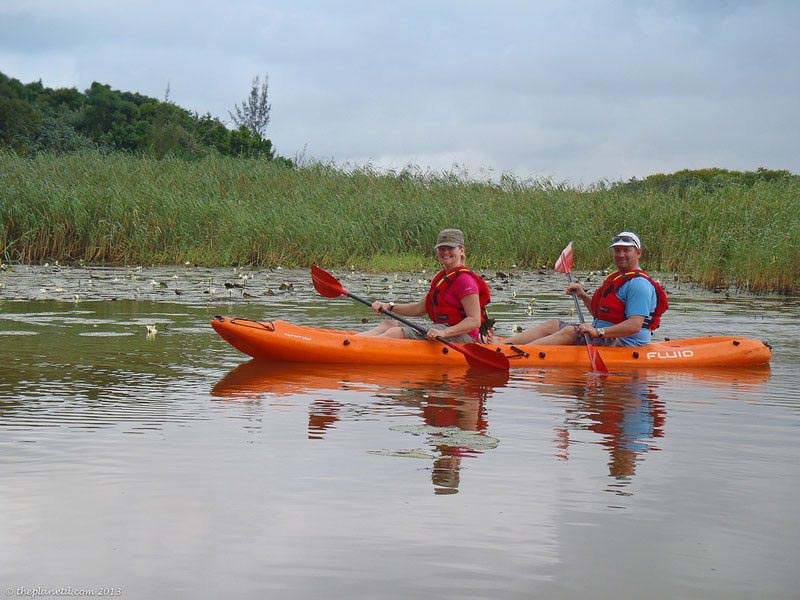 unique things to do in South Africa Kayak with Crocs