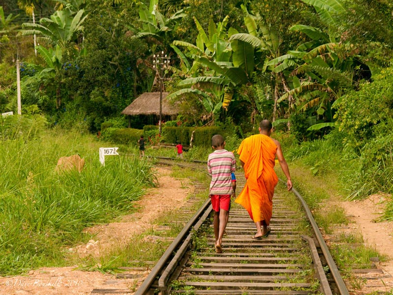 what to do in sri lanka meet the locals