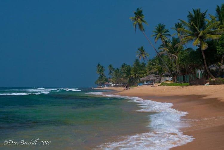 what to do in Sri Lanka beaches