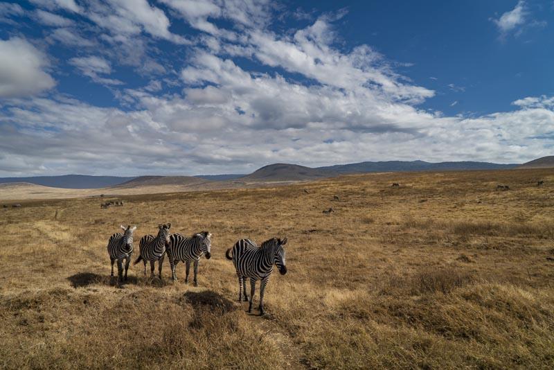 Tanzania travel ngorngoro crater
