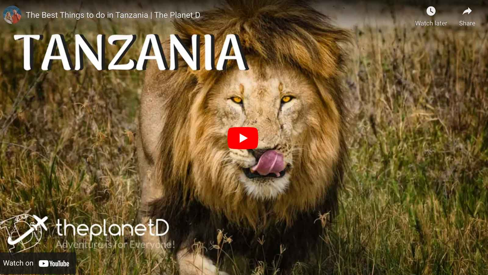 things to do in tanzania video