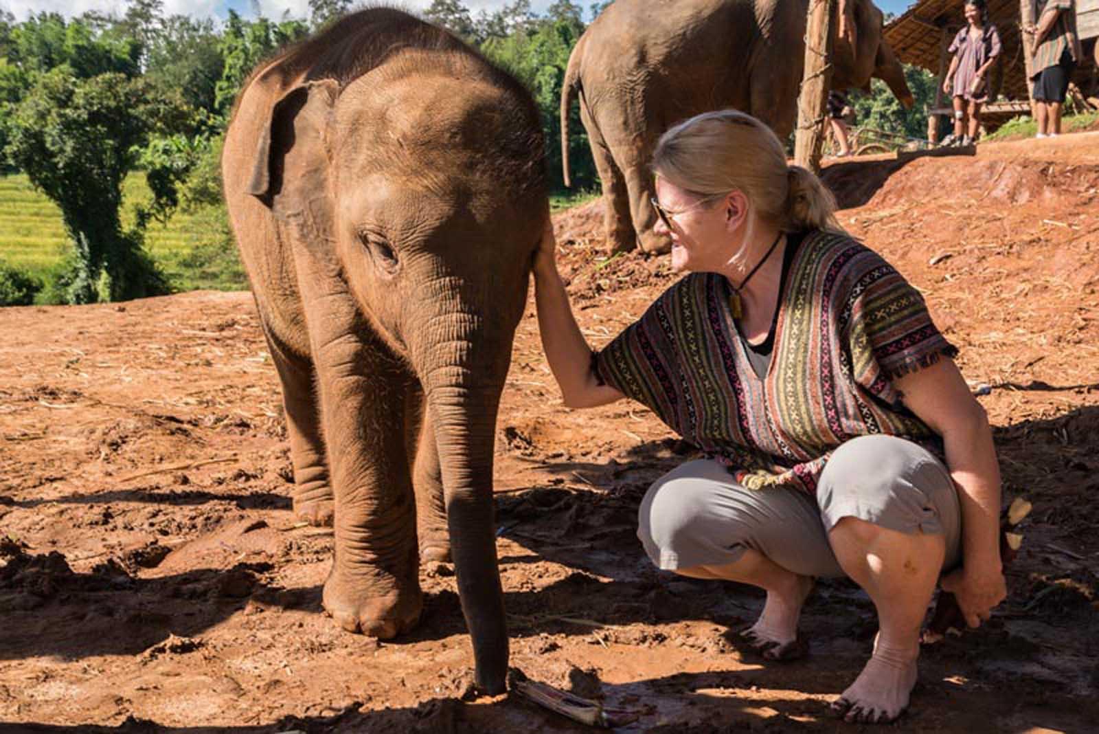 places to visit in thailand elephant sanctuary