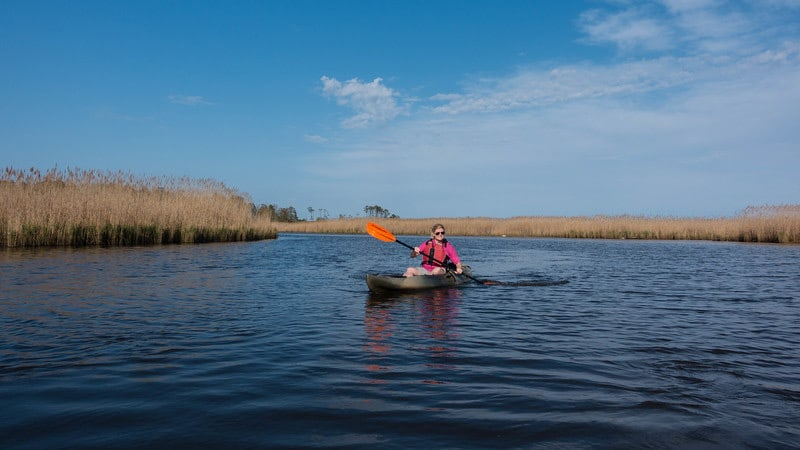 what to do in Virginia Beach Wildlife Refuge