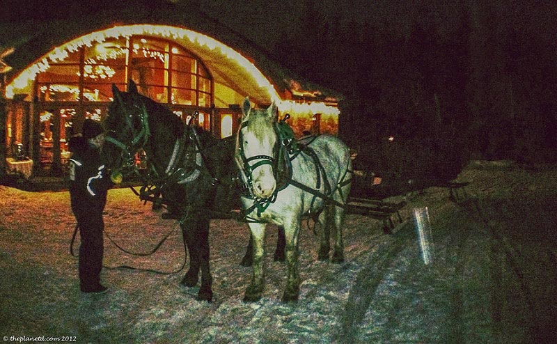 what to do in whistler in winter sleigh rides