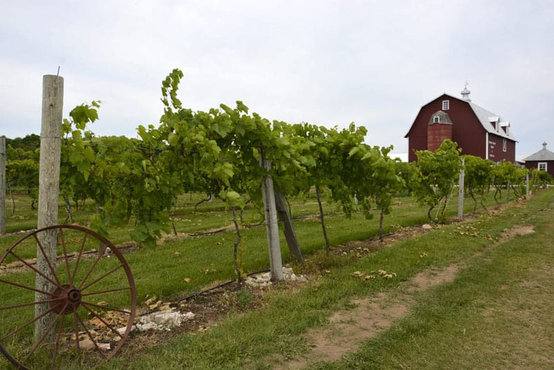 things to do in wisconsin orchard