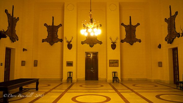 tiger-skins-hang-on-wall-maharaja-palace
