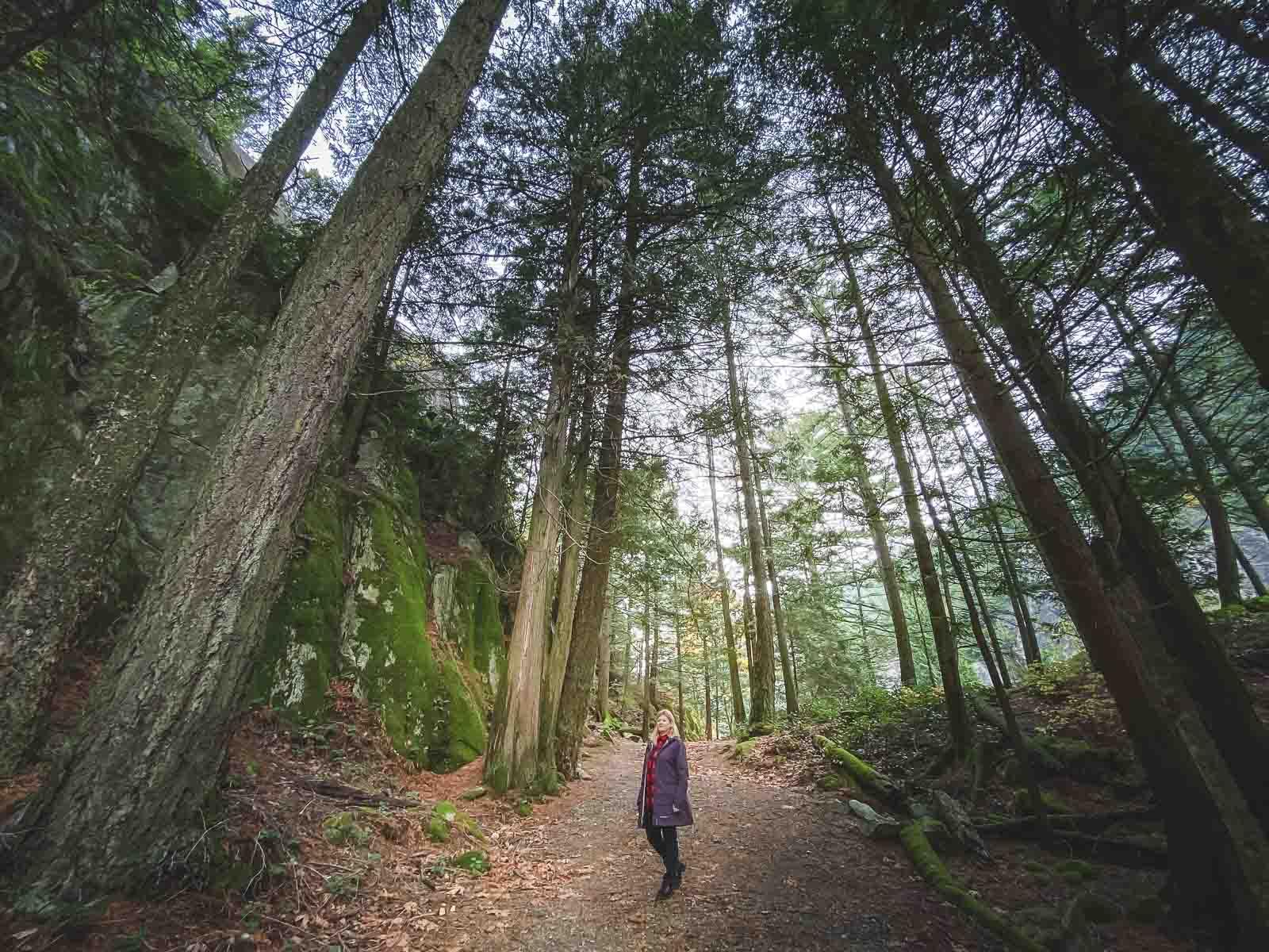 Hiking the trail system near Squamish BC