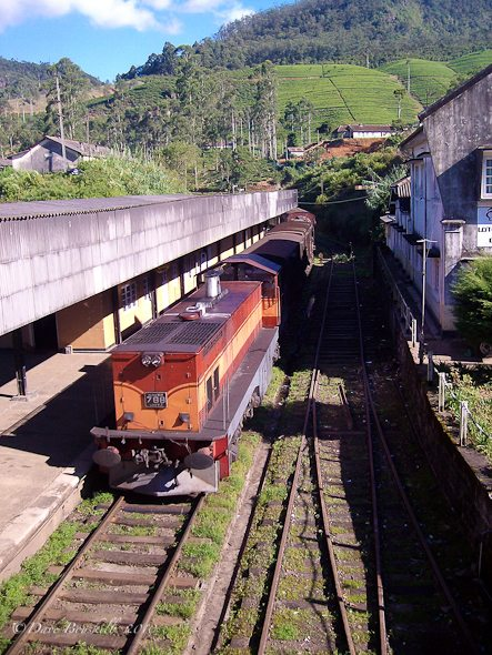 train arrives at station in Sri Lanka