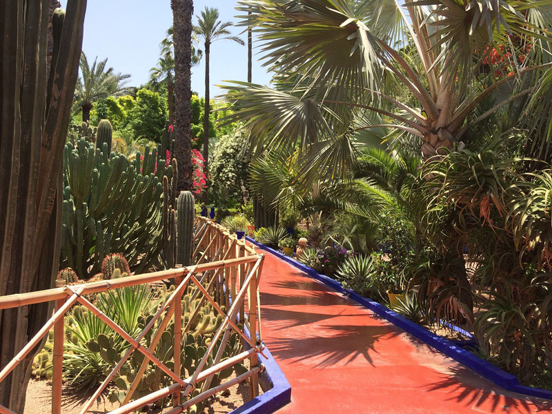 travel blogging marrakesh