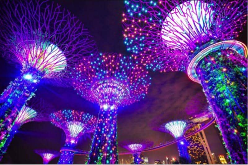 singapore travel tips Gardens by the bay