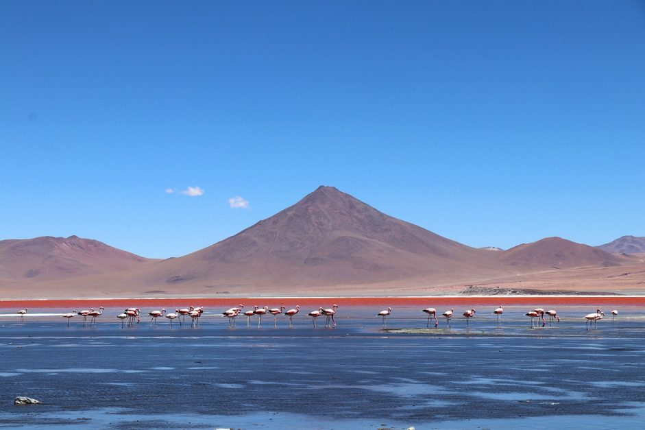 travel to bolivia featured image