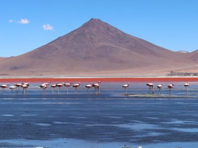 10 Reasons You Should Travel To Bolivia