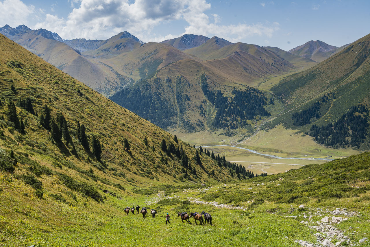 Horse trekking in Kyrgyzstan treatment of animals