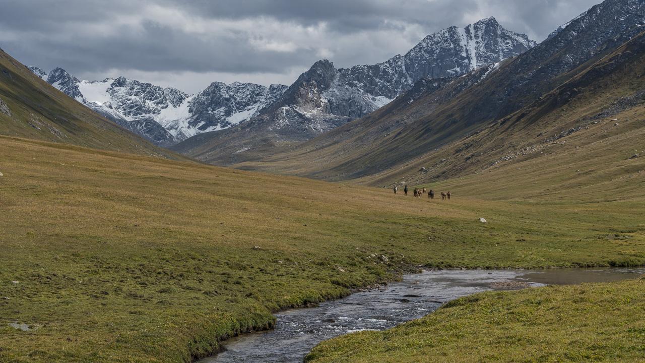 trekking Kyrgyzstan Wild Horses
