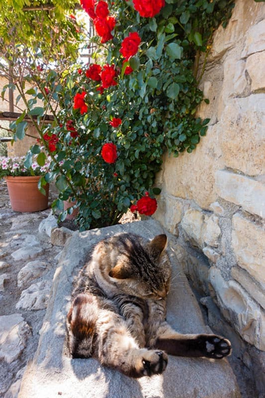 borgo argenina tuscany