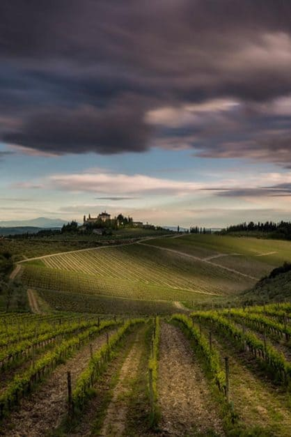castle in tuscany over vineyard