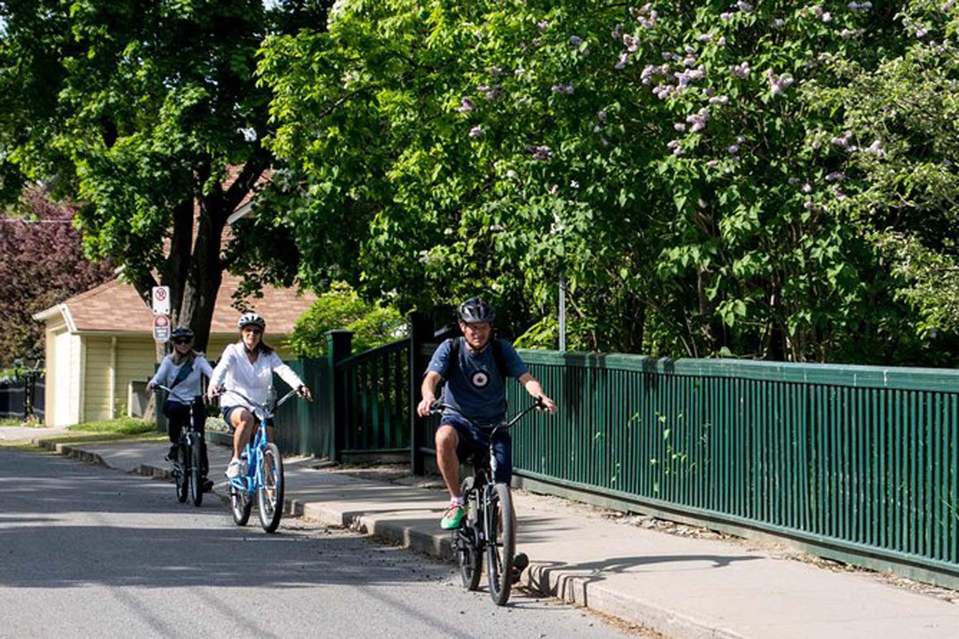 cycling tours kingston