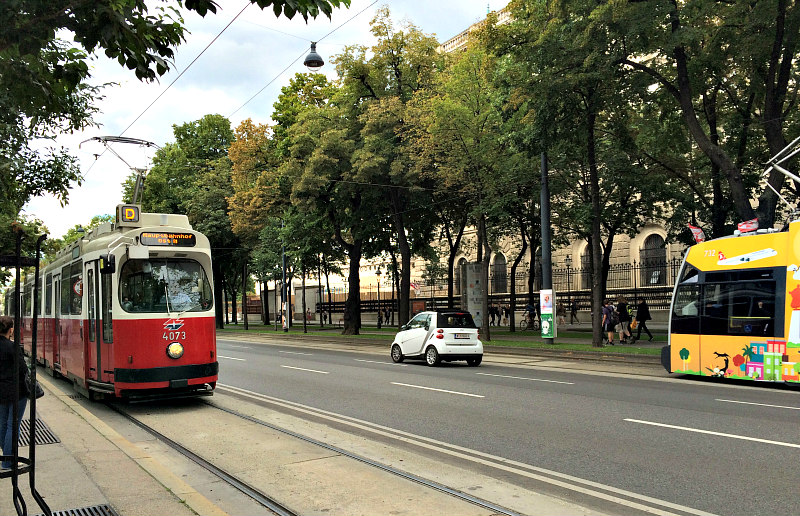 vienna travel guide | local transport
