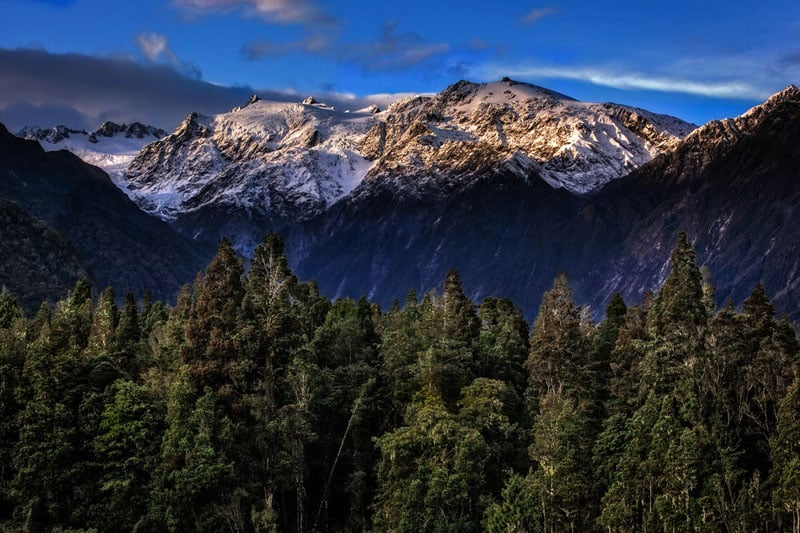 visit new zealand franz josef