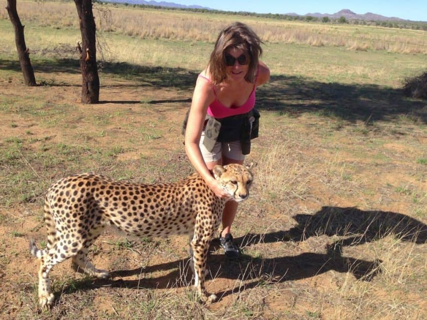 my walk with cheetahs