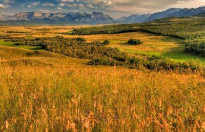 things to do in waterton lakes national park prairies